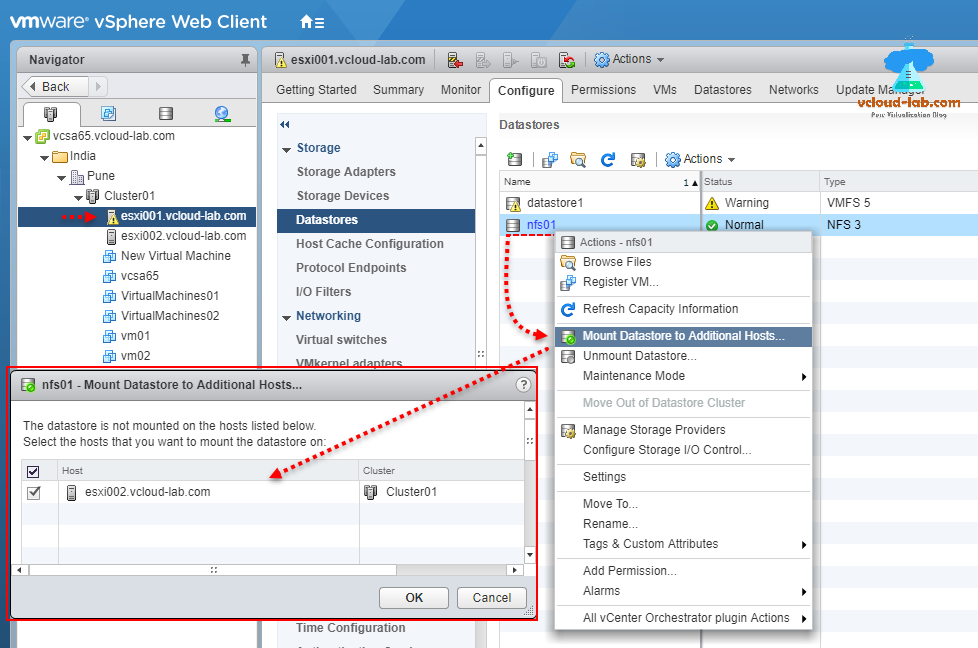 Mount NFS share to multiple ESXi hosts | vGeek - Tales from