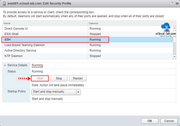 VMWARE SECURITY BEST PRACTICES: POWERCLI ENABLE OR DISABLE