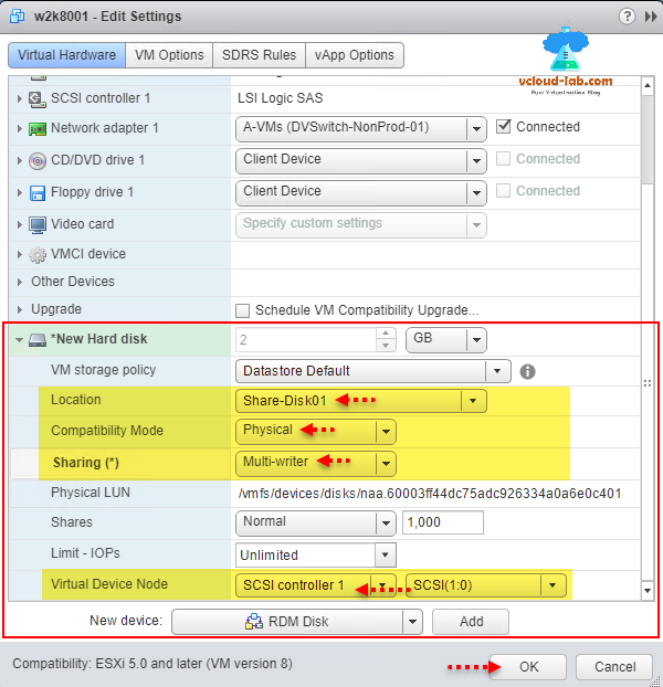 Adding and sharing RDM disk to multiple VMs in VMware step