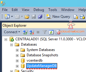 Update Manager sql Database