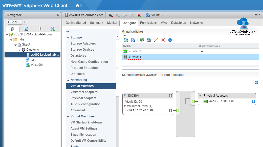 VMware vSPHERE web client vcenter esxi vswitch, virtual switches, standard switch, iSCSI, Physical adapters diagram