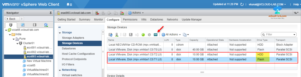 VMware vSphere web client, configure storage devices local disk HDD and SSD flash disk type parallel scsi.png