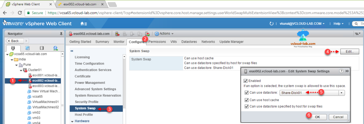 vmware vsphere esxi, web client ui, user interface, esxi configure system swap, can use datastore, ssd